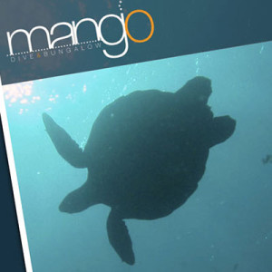 Mango Dive & Bungalow